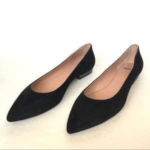 Jil Sander Black Embellished Suede Point-toe Flats